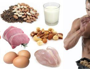 Liste des aliments pour bien nourrir les muscles