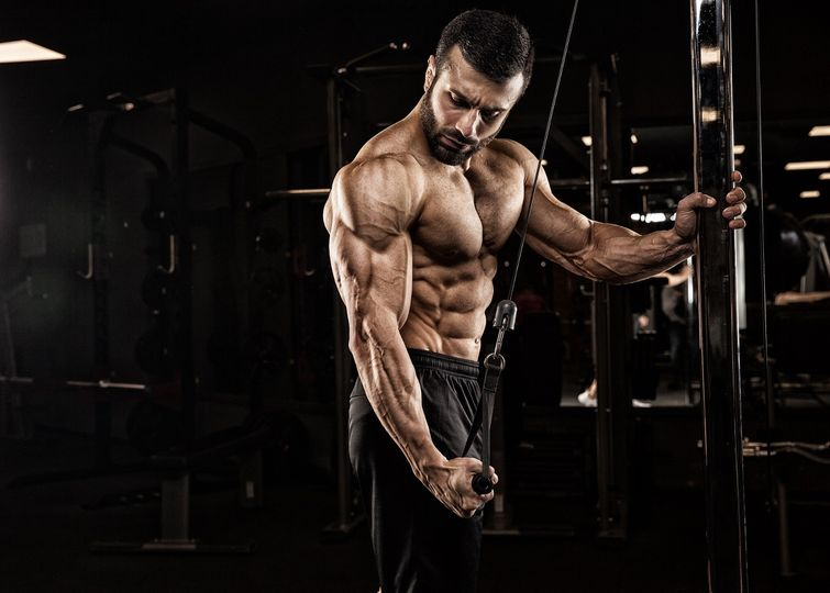 jak na mohutne paze vsadte na efektivni trenink tricepsu