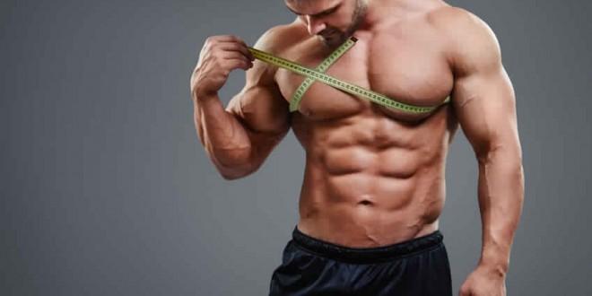 A quel âge peut-on commencer la musculation ?