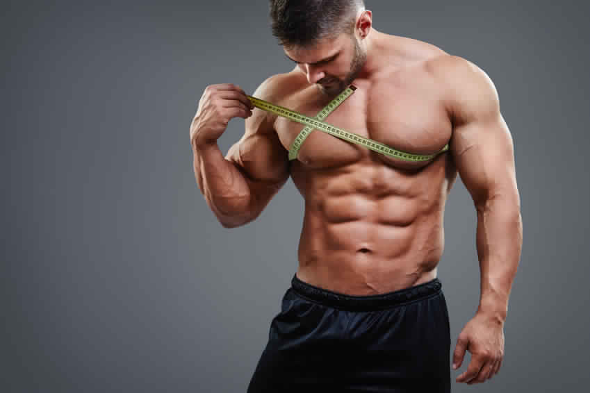 bodybuilding cutting cycle steroids