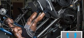 Comment faire de la Presse à Cuisses pour se Muscler les Jambes ?