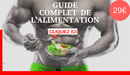 programme alimentation musculation