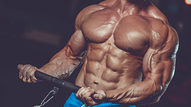 10 Rules for Building Muscle Without Getting Fat min