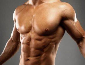 prendre du muscles