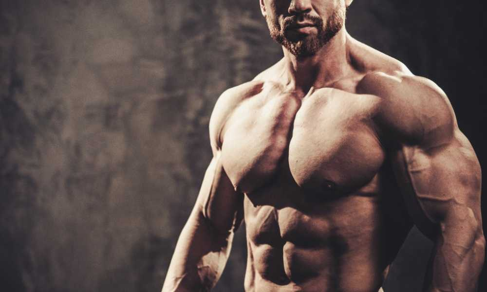Comment conserver sa masse musculaire