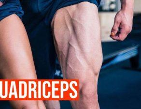Programme pour se muscler les quadriceps