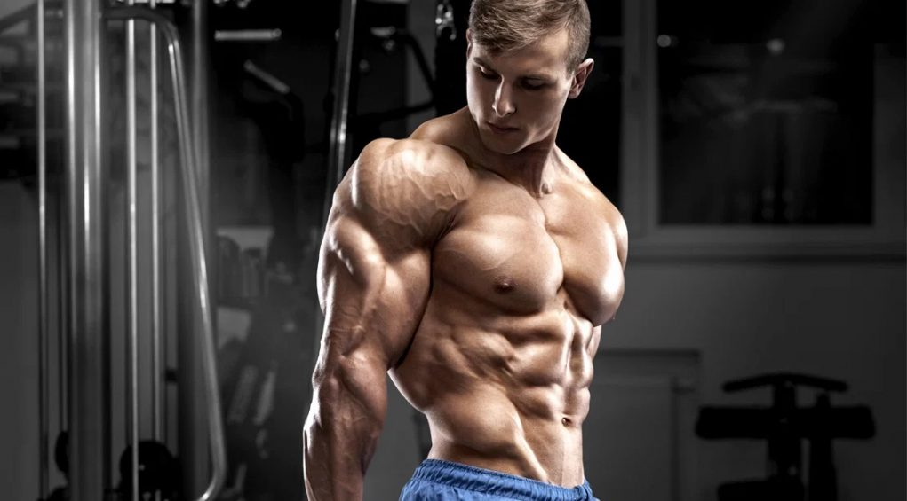 Programme musculation triceps